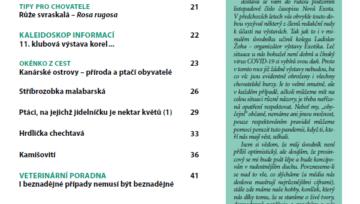 Obsah časopisu Nová Exota č. 11/2020